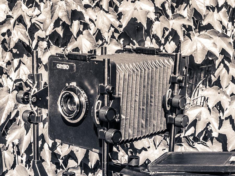 Disque d'indice de tirage du soufflet de chambre photographique